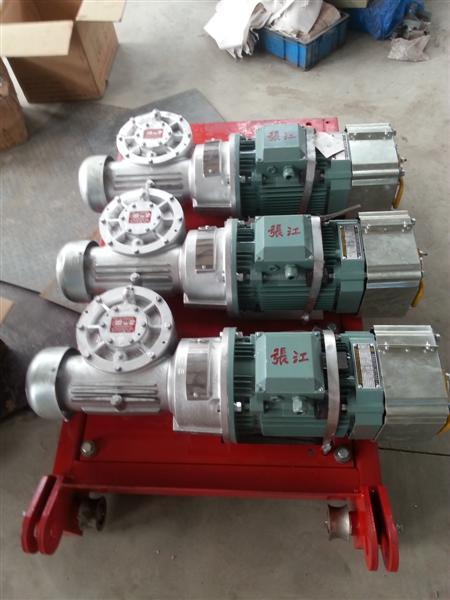 OEM Lifting Construction Hoist Parts Electric Cage Hoist Motor